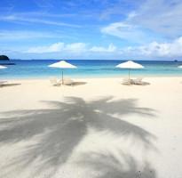 玩瘋帛琉三次出海樂翻天、硨磲灣獨木舟、珊瑚深度之旅5日-泛太平洋渡假村
