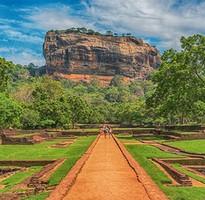 斯里蘭卡8天~四大世界遺產、佛跡聖地、錫蘭茶旅