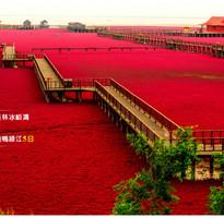 東北遼南小桂林冰峪溝、紅海灘、中朝邊境鴨綠江5日