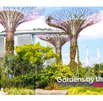 《9999含稅起》特選新加坡~牛車水、濱海灣花園、金沙娛樂城快閃3日