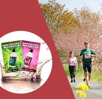 【主題旅遊】越南峴港國際馬拉松~山水海灘、順化皇城、會安古鎮5日