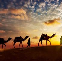 秋季特賣會♯尋寶趣送110歐元》經典摩洛哥~卡薩布蘭卡.馬拉喀什.藍色城市蕭安.夜宿撒哈拉沙漠11日