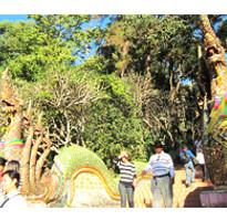 《亞航假期》泰北雙城騎緣~金三角遊河、叢林騎象、少數民族部落5日(含稅)