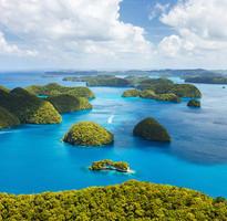 【PALAU HOTEL】帛琉精選二次出海、水母湖、海豚灣、獨木舟4日