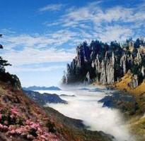 暑假早買省♯湖北武當山、神農架、三峽人家8日(升等武漢洲際酒店)