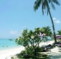 【泰獅航聯營】。輕鬆FUN玩~合艾麗貝島5日《含稅簽.贈小費》