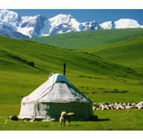 《北疆》秋遊喀納斯、花海那拉提、九曲十八灣、魔鬼城、可可托海11日●三排椅