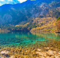 暑降省很大♯【暑假清艙】絕美甘南~花湖若爾蓋、藏族扎尕那、隴南官鵝溝、拉卜楞寺八日