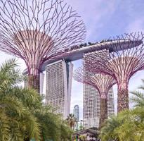 【新加坡 簡美學】~輕鬆玩樂之旅