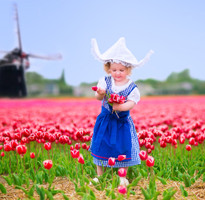 【蜜月典藏】荷比盧鬱金香花園、雙古堡、三色村、庫勒慕勒、米其林風味9日