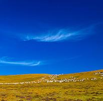 暑假早買省♯內蒙FUN暑假~烏蘭烏素草原、成吉思汗陵、一日蒙古人、生態親子遊六日(含稅、無購物、無自費)