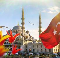 【賺很大】土耳其鬱金香花季、伊斯坦堡、居爾哈尼公園、棉堡、番紅花城9日