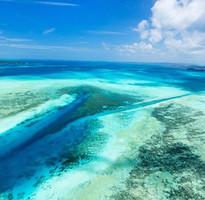 【就是愛帛琉5日-愛萊森林度假村】二次出海、水母湖、大斷層、牛奶湖、愛萊環礁奇景區、水上活動
