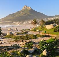 南非共和國 與野生動物的親密接觸10日