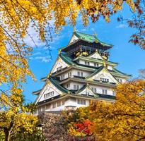 關西好自在~京都醉風情、奈良好滋味、神戶港灣遊、大阪半日閒五日(含稅)